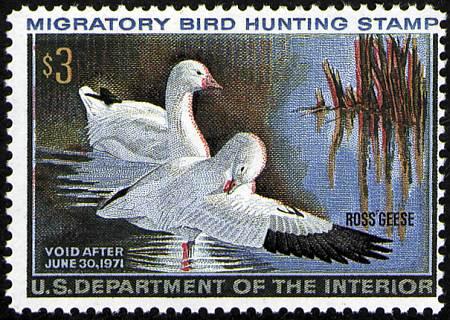 1970-1989 Ducks  #RW37-RW56