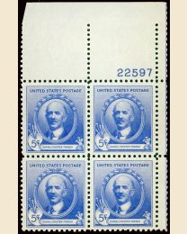 # 887 - 5¢ D.C. French: plate block
