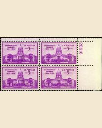 # 896 - 3¢ Idaho Statehood: plate block