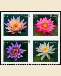 #4964S- (49¢) Water Lilies