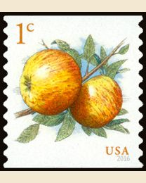 #5037 - 1¢ Albemarle Pippin Apples