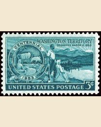 #1019 - 3¢ Washington Territory