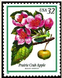 #3196 - 32¢ Prairie Crab Apple