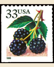 #3297 - 33¢ Blackberries