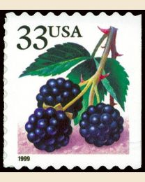 #3301 - 33¢ Blackberries