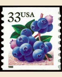 #3302 - 33¢ Blueberries
