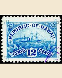 1894 Hawaii Steamer