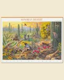 Sonoran Desert Sheet of 10