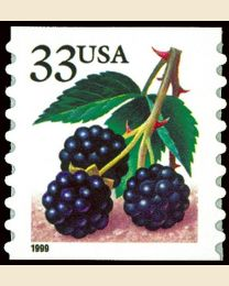 #3304 - 33¢ Blackberries coil