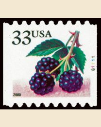 #3406 - 33¢ Blackberries
