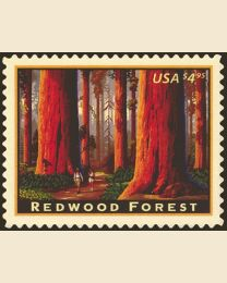 #4378 - $4.95 Redwood Forest