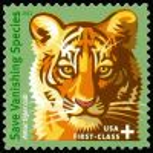 #B4 - (55¢) Tiger Cub