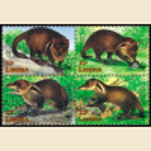 WWF Liberian Mongoose