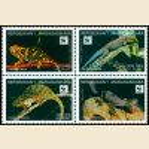 WWF Lizards