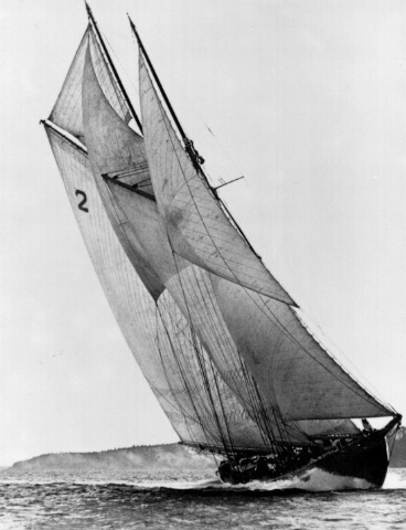 Bluenose Front View